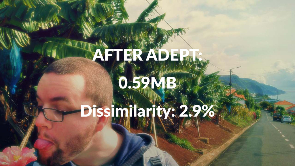AFTER&ADEPT: 0.59MB Dissimilarity:+2.9%