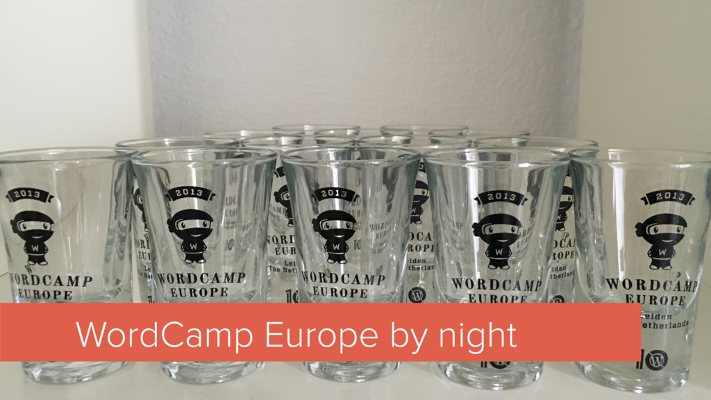 WordCamp Europe by night