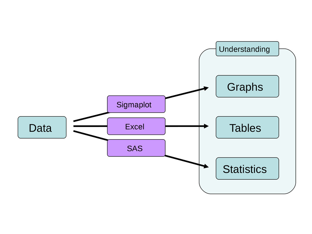 Tables Data Graphs Statistics Understanding Sig...