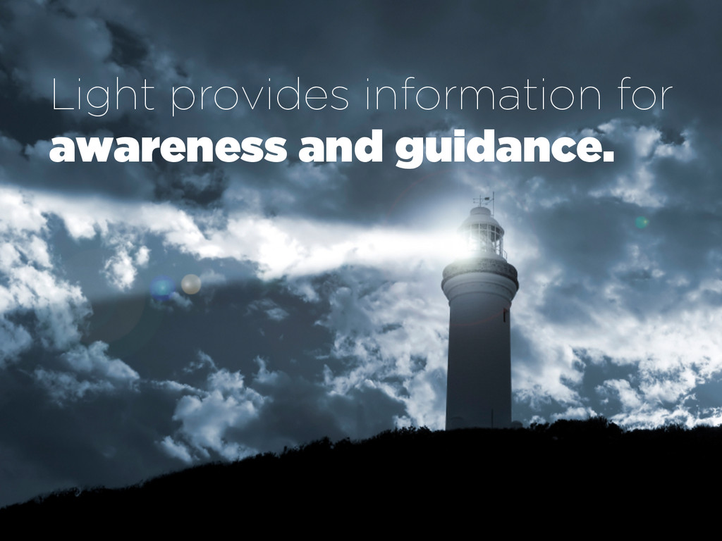 Light provides information for awareness and gu...