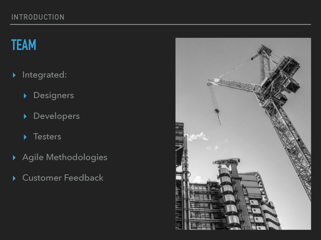 INTRODUCTION TEAM ▸ Integrated: ▸ Designers ▸ D...