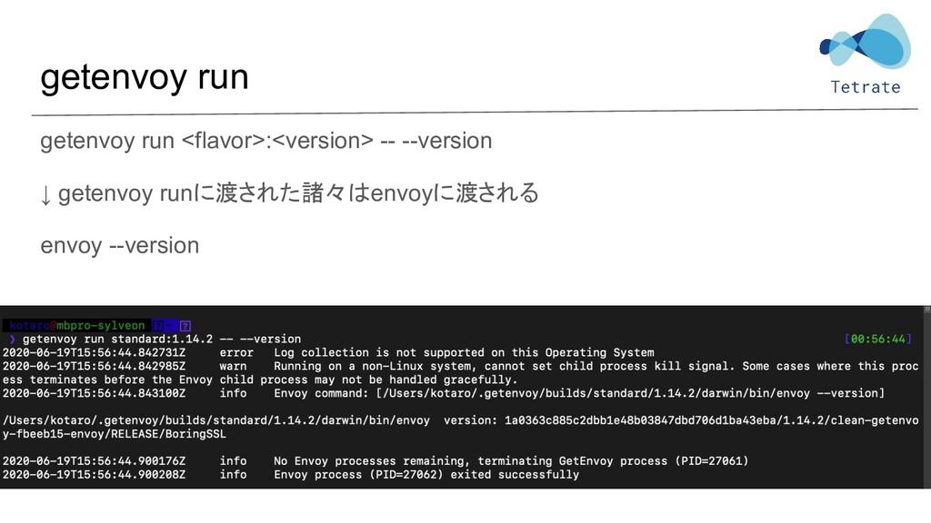 getenvoy run getenvoy run <flavor>:<version> --...
