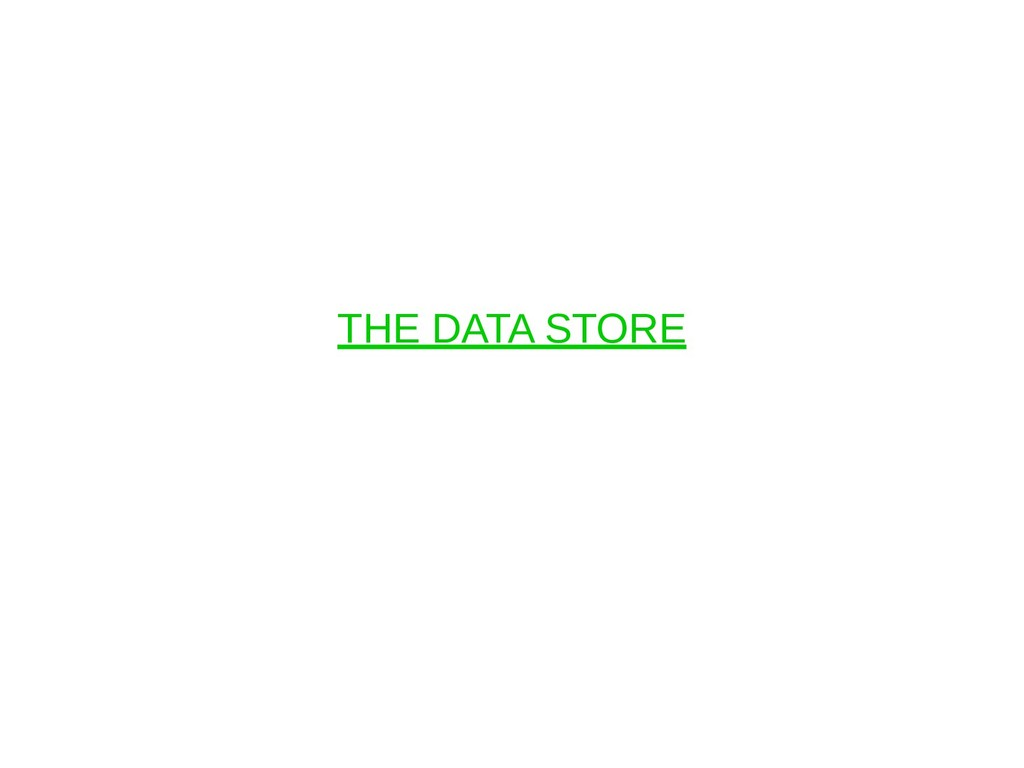 THE DATA STORE