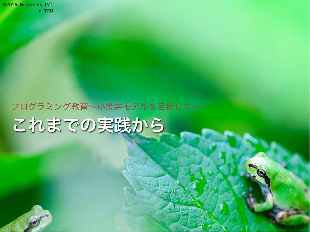 ©2016- Naoki Kato, IML at TGU これまでの実践から プログラミング...