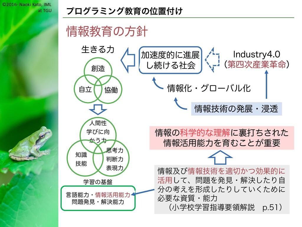 ©2016- Naoki Kato, IML at TGU プログラミング教育の位置付け 情報...