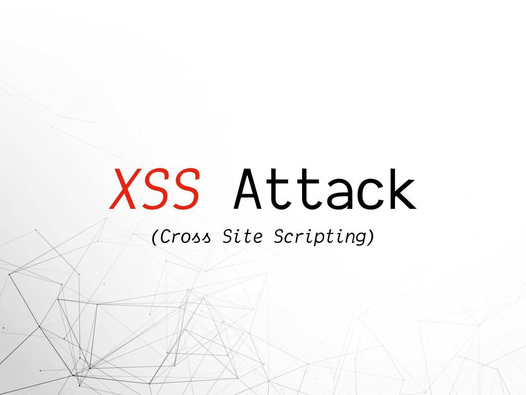 XSS Attack (Cross Site Scripting)