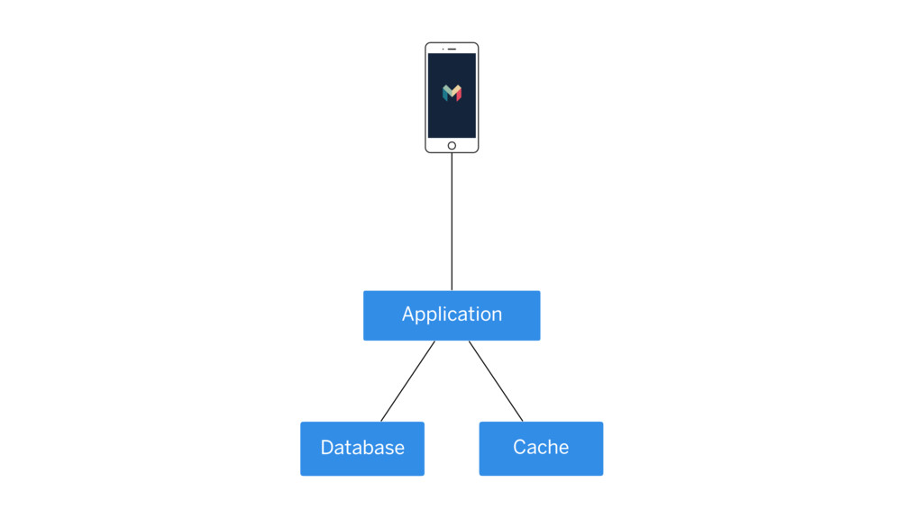 Application Database Cache