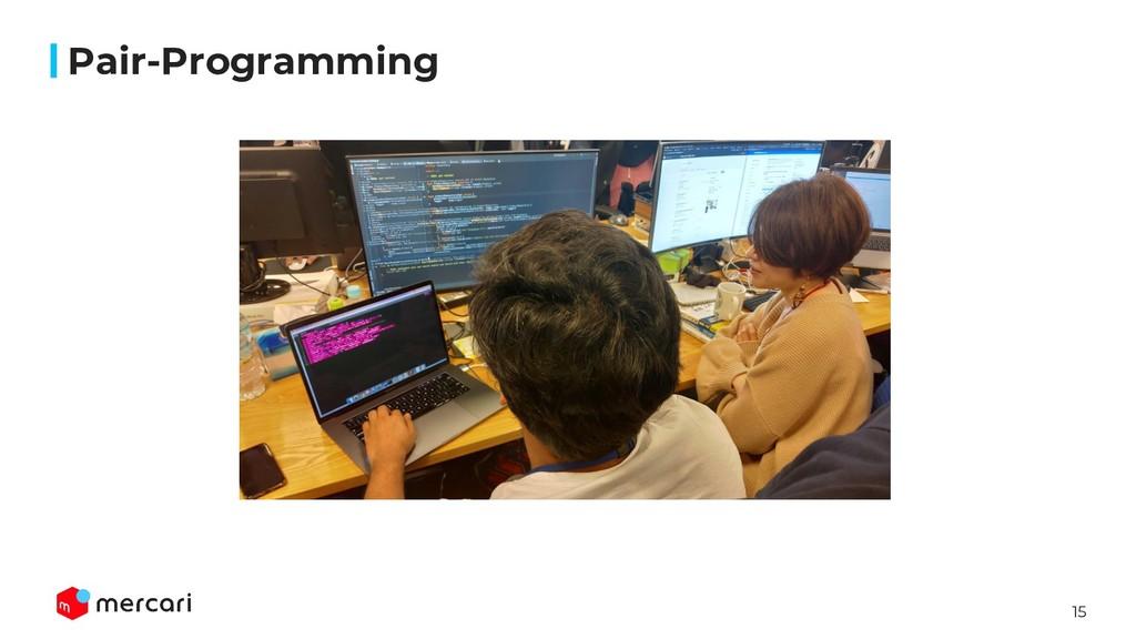 15 画像 Pair-Programming