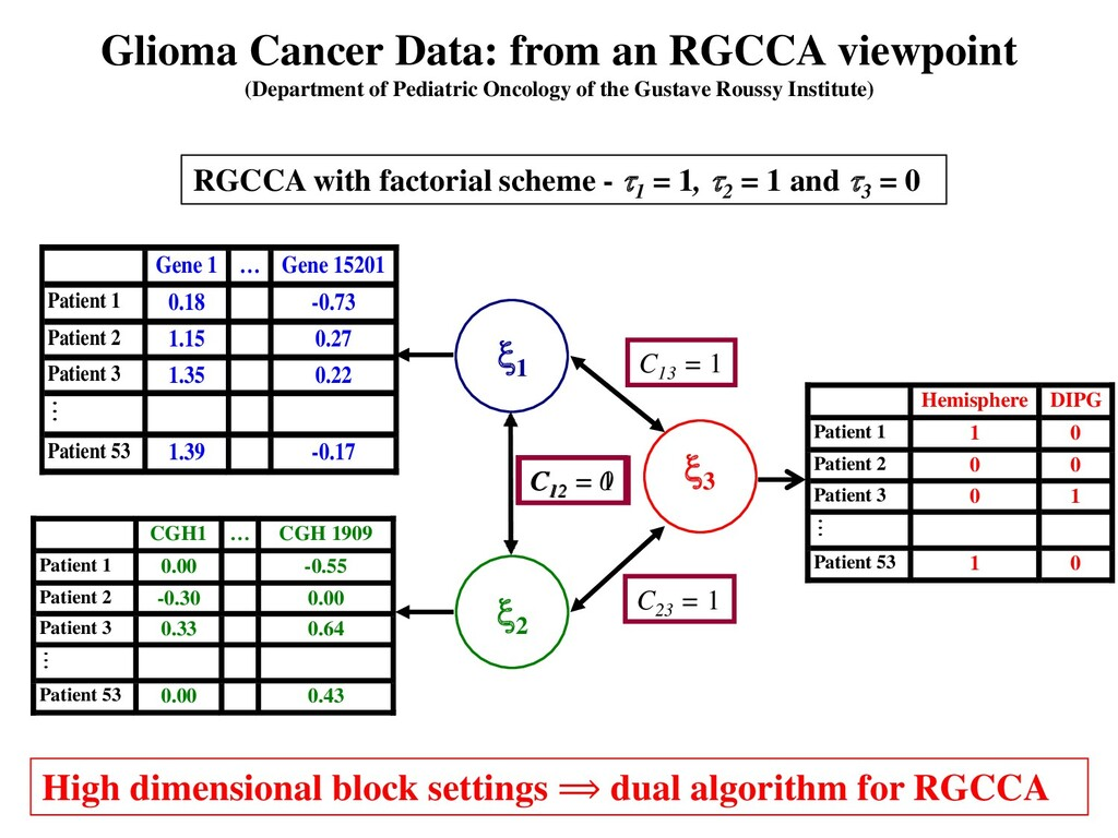 Glioma Cancer Data: from an RGCCA viewpoint (De...