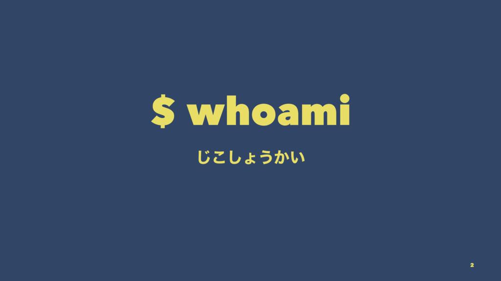 $ whoami ͜͡͠ΐ͏͔͍ 2