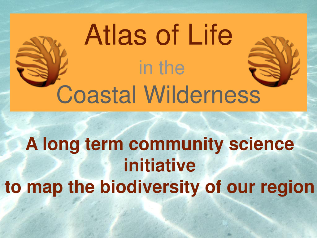 Atlas of Life in the Coastal Wilderness A long ...