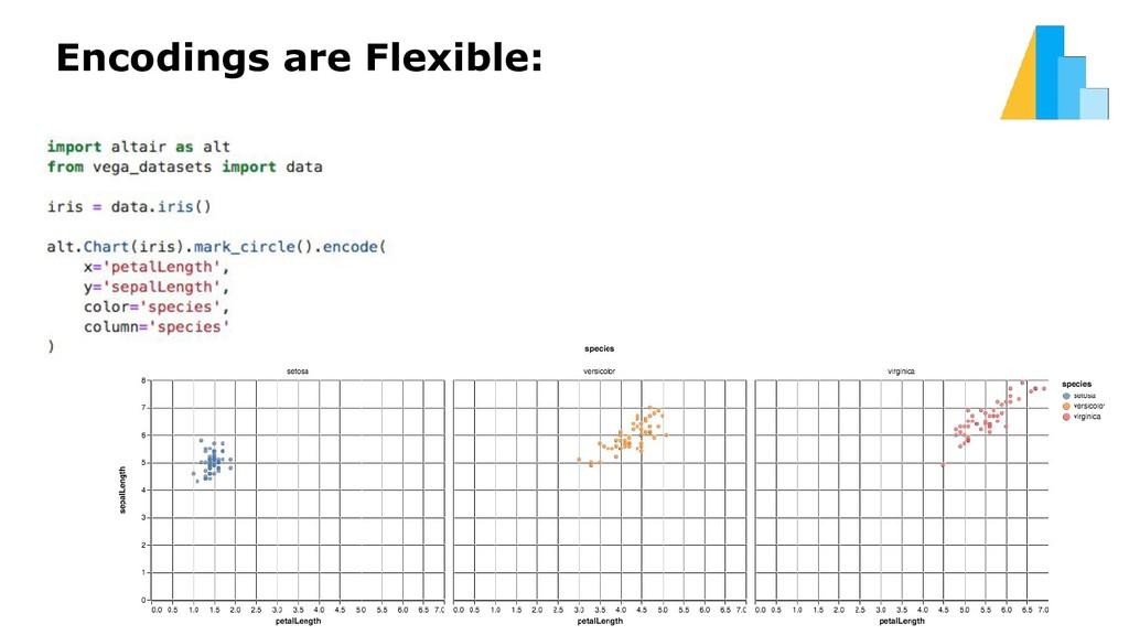 Encodings are Flexible: