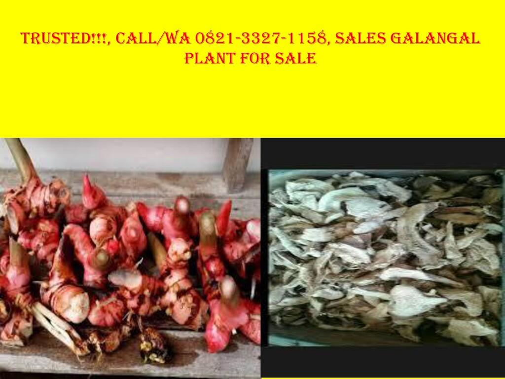 Trusted!!!, Call/Wa 0821-3327-1158, Sales Galan...