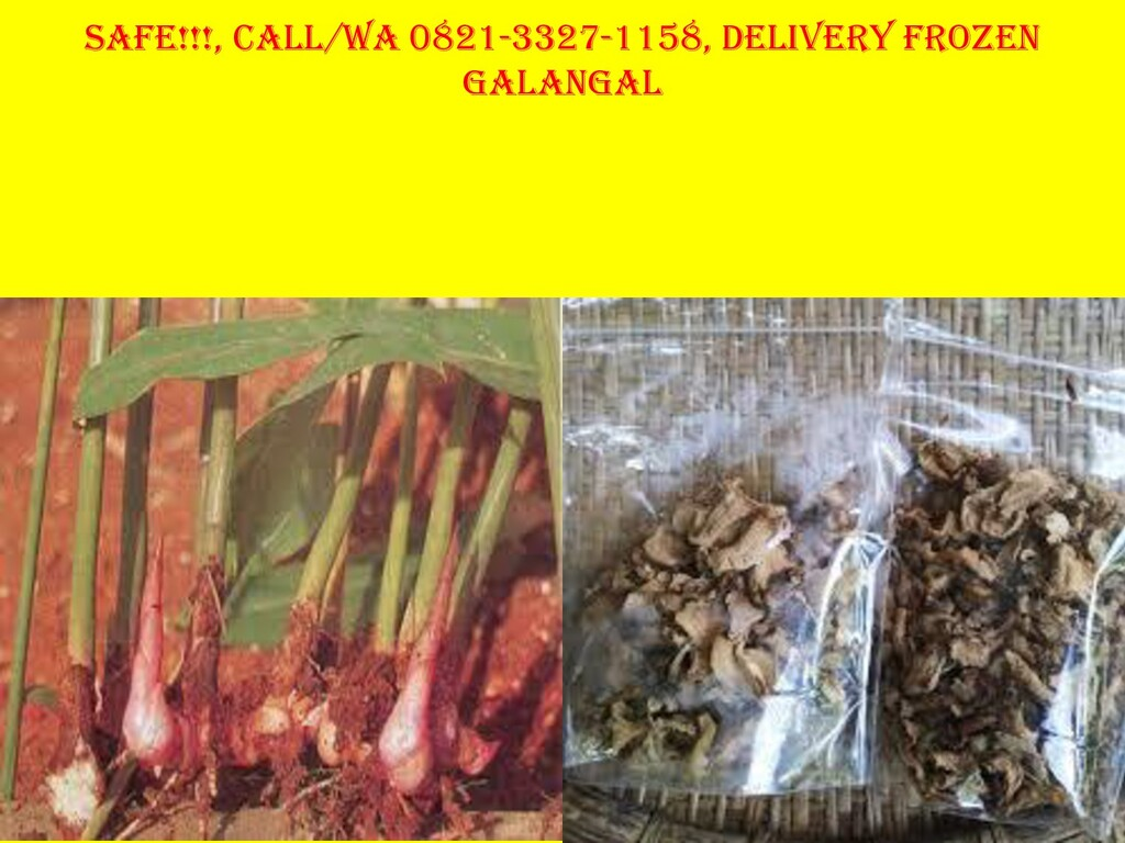 Safe!!!, Call/Wa 0821-3327-1158, Delivery Froze...