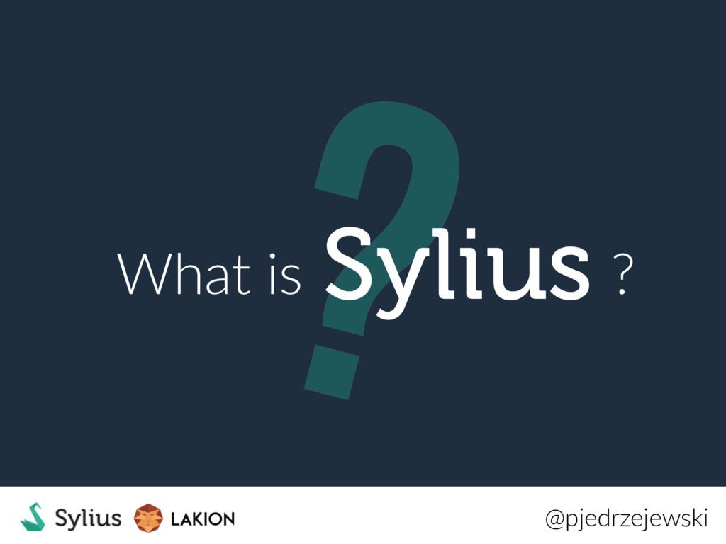 ? What is ? @pjedrzejewski Sylius