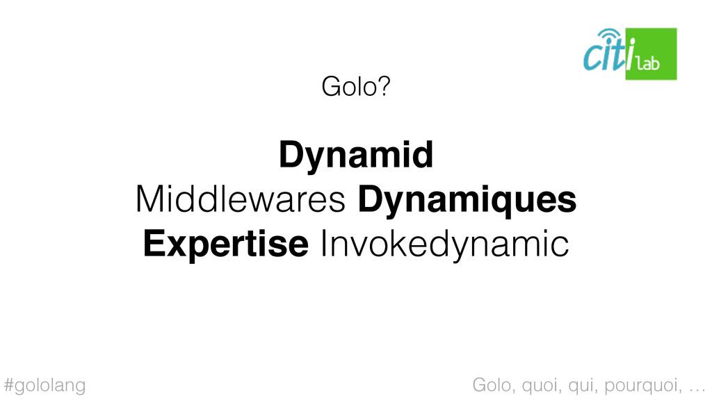 #gololang Dynamid Middlewares Dynamiques Expert...