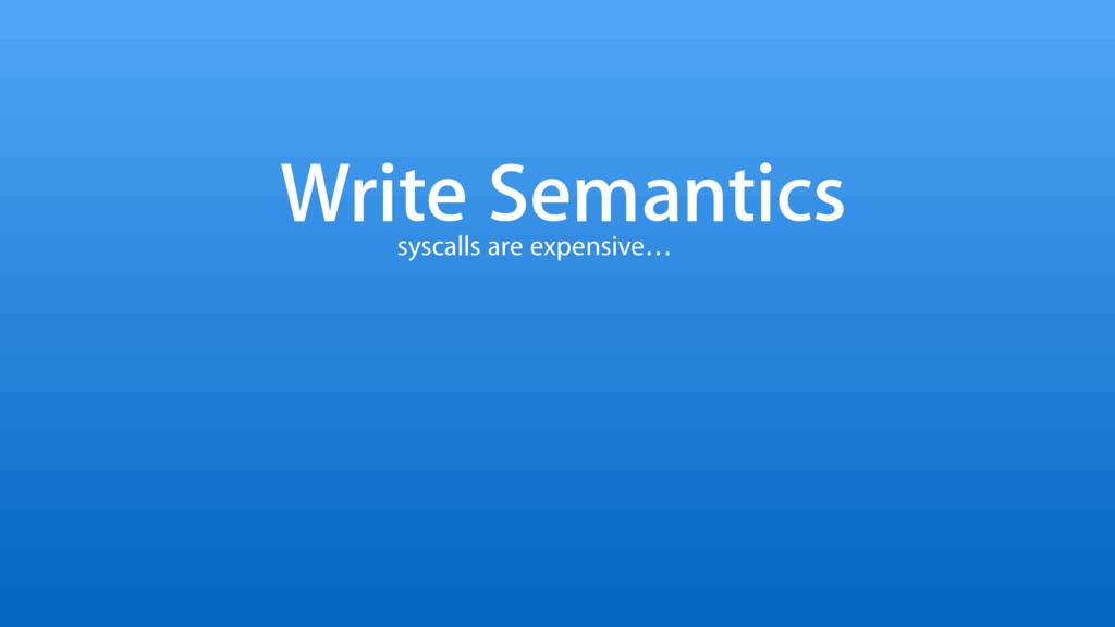 Write Semantics syscalls are expensive…