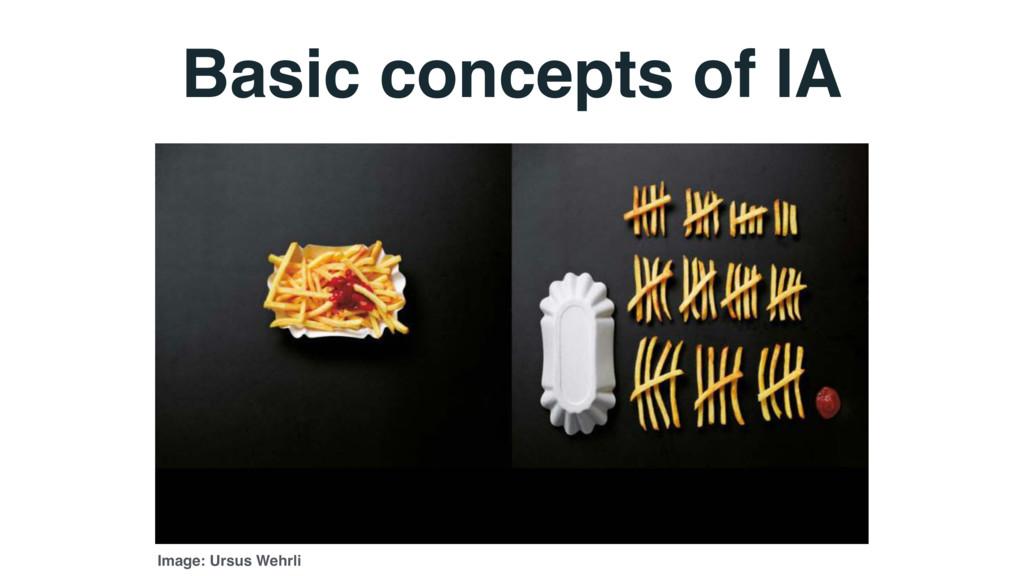 Basic concepts of IA Image: Ursus Wehrli