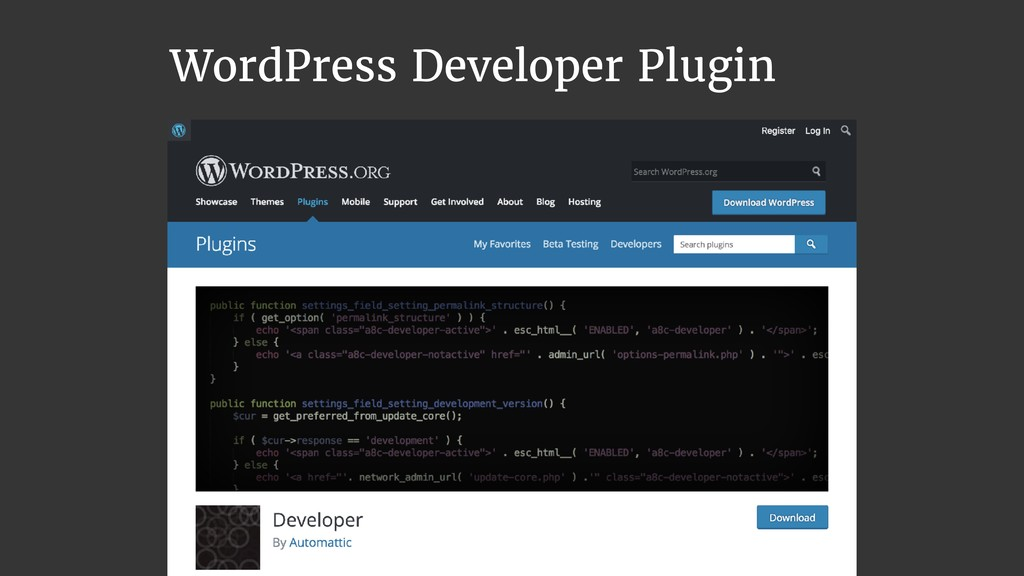 WordPress Developer Plugin
