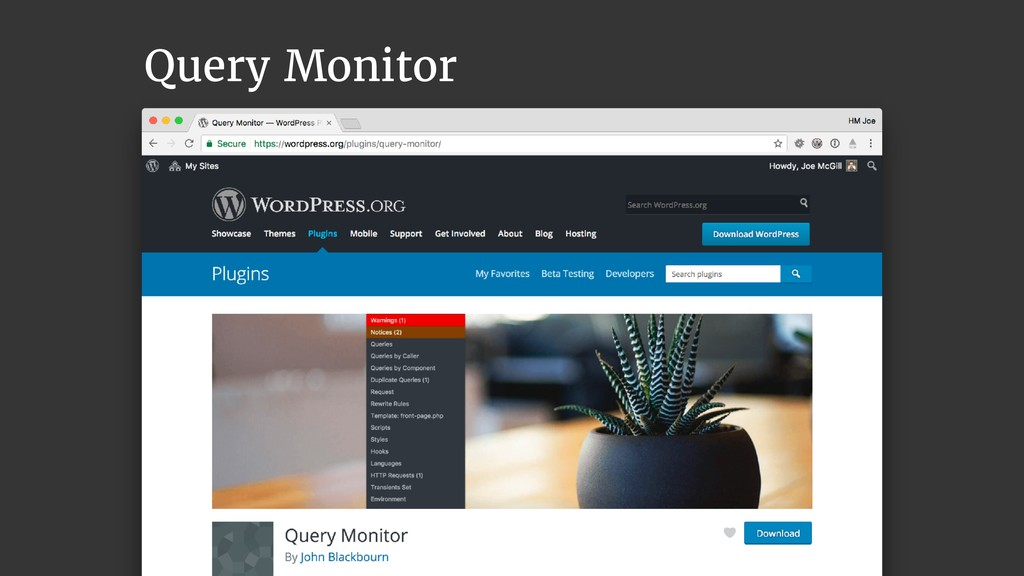@joemcgill Query Monitor