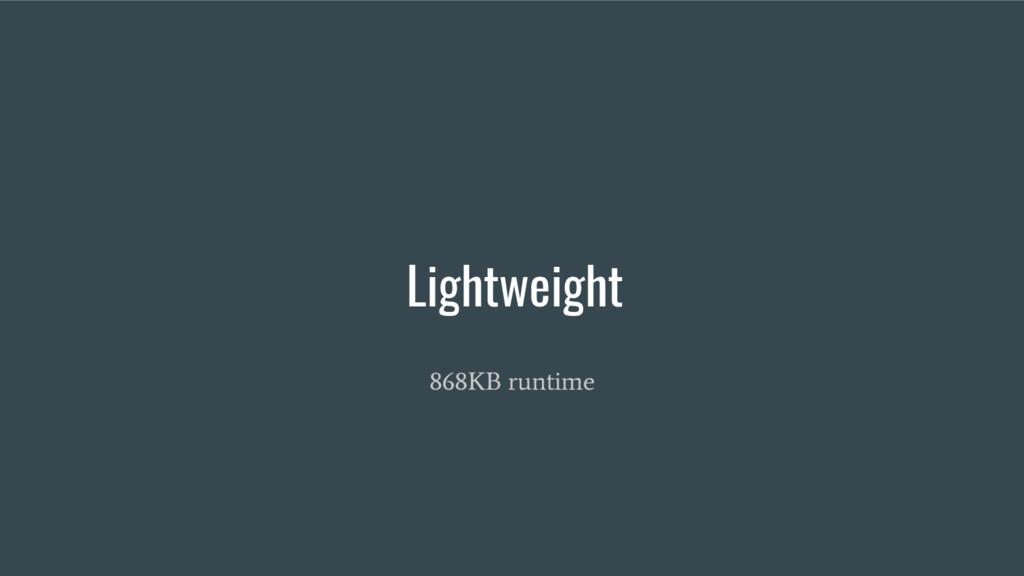 Lightweight 868KB runtime