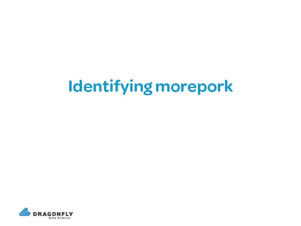 Identifying morepork