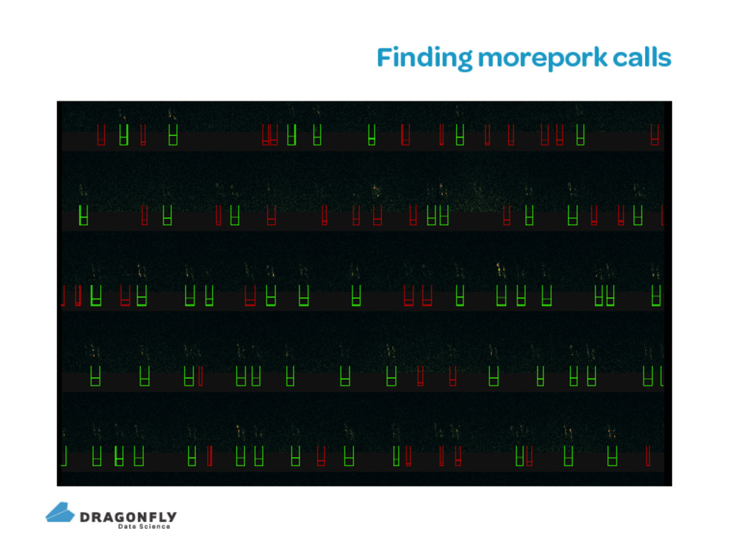 Finding morepork calls