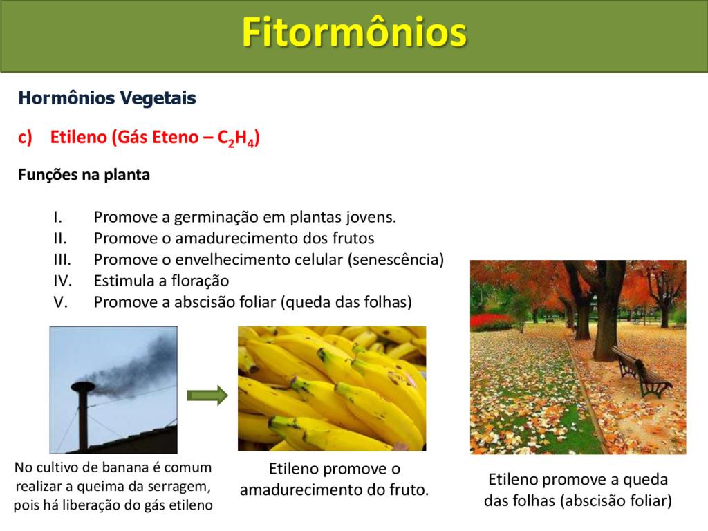 Hormônios Vegetais c) Etileno (Gás Eteno – C2 H...