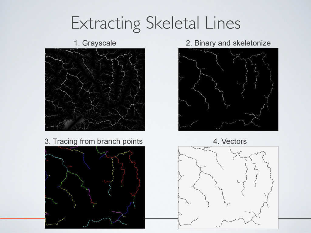Extracting Skeletal Lines 1. Grayscale 2. Binar...