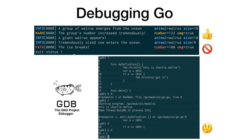 Debugging Go