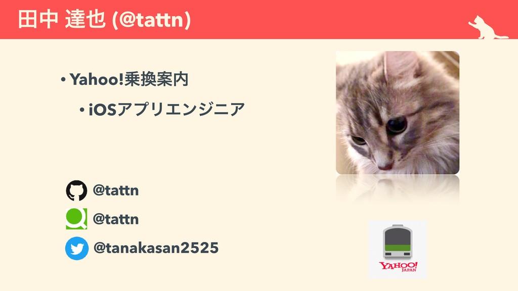 ాத ୡ (@tattn) • Yahoo!Ҋ • iOSΞϓϦΤϯδχΞ @tatt...