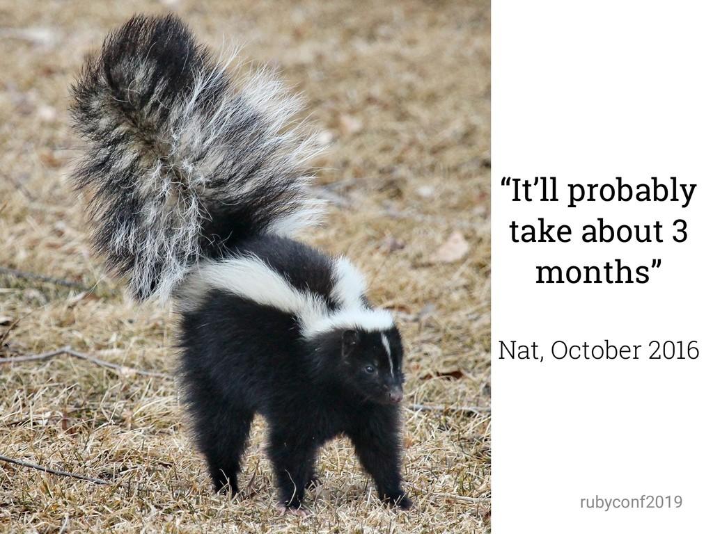 "@amynewell / @natbudin rubyconf2019 ""It'll prob..."