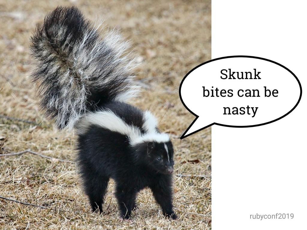 @amynewell / @natbudin rubyconf2019 Skunk bites...