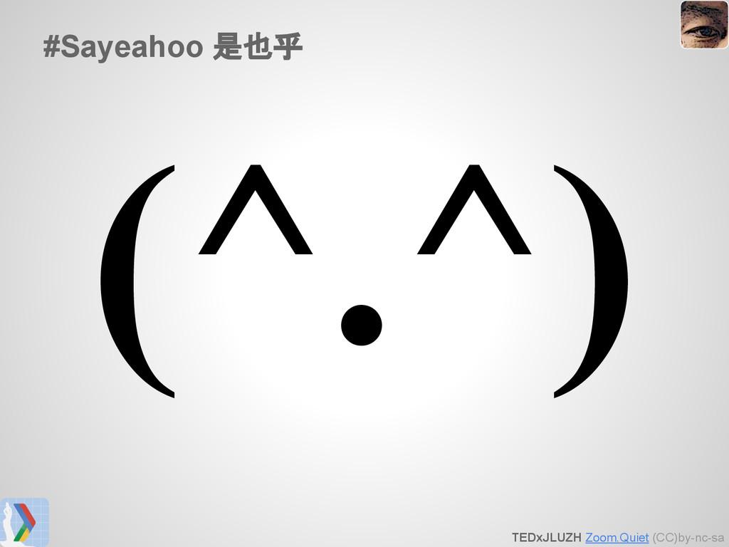 TEDxJLUZH Zoom.Quiet (CC)by-nc-sa #Sayeahoo 是也乎...
