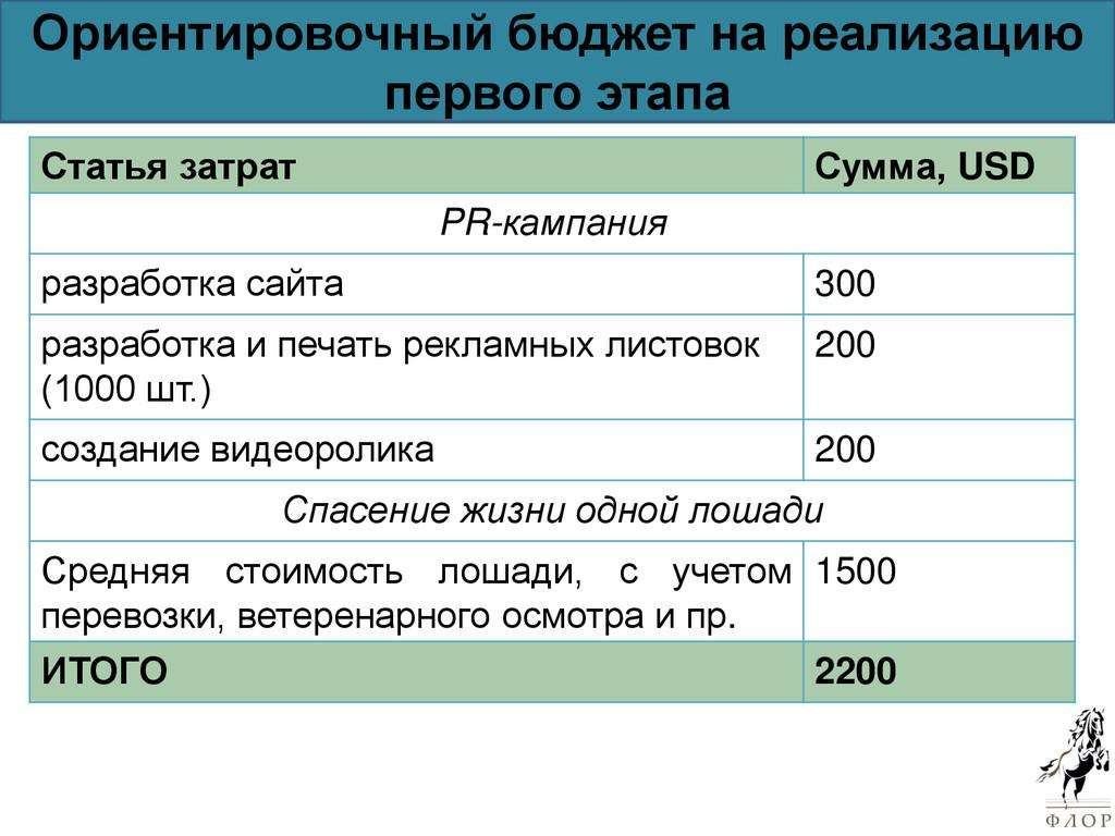 Ориентировочный бюджет на реализацию первого эт...