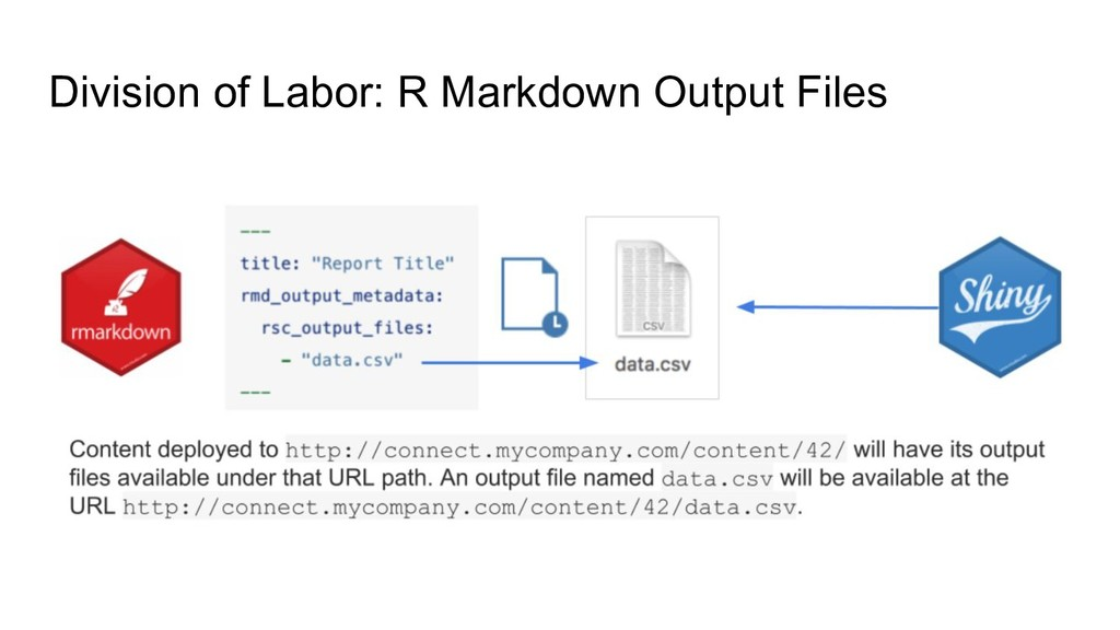 Division of Labor: R Markdown Output Files