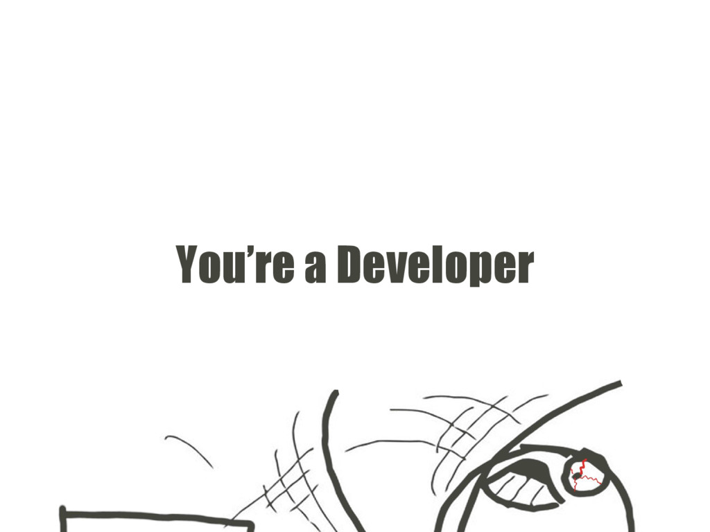 You're a Developer