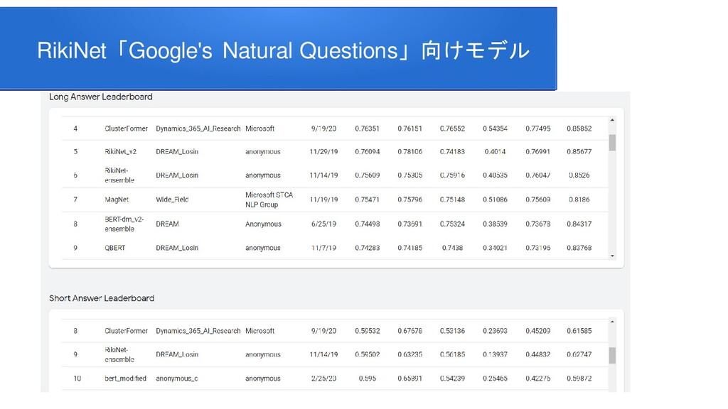 RikiNet「Google's Natural Questions」向けモデル