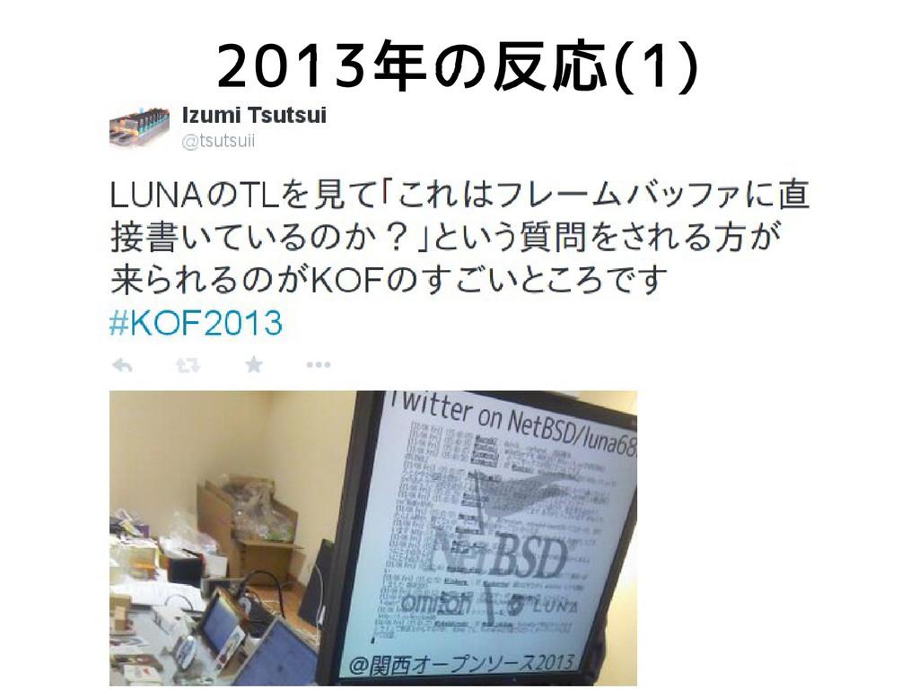 2013年の反応(1)