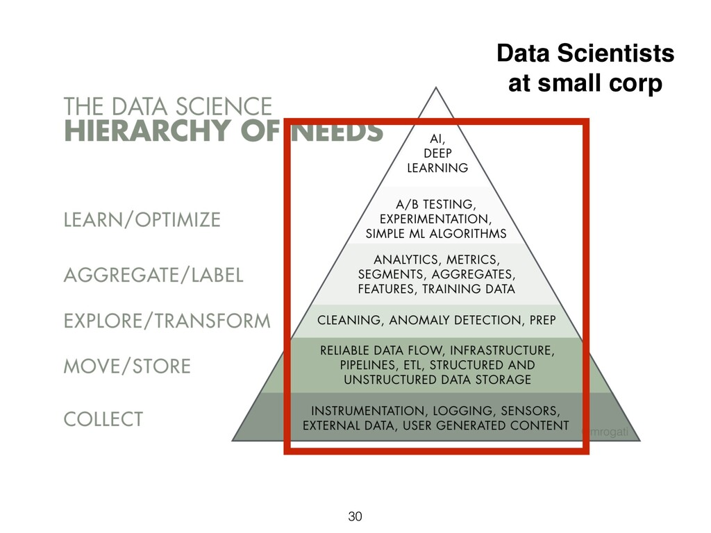 30 Data Scientists at small corp