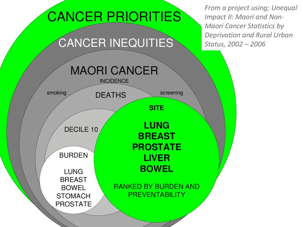 CANCER PRIORITIES CANCER INEQUITIES MAORI CANCE...