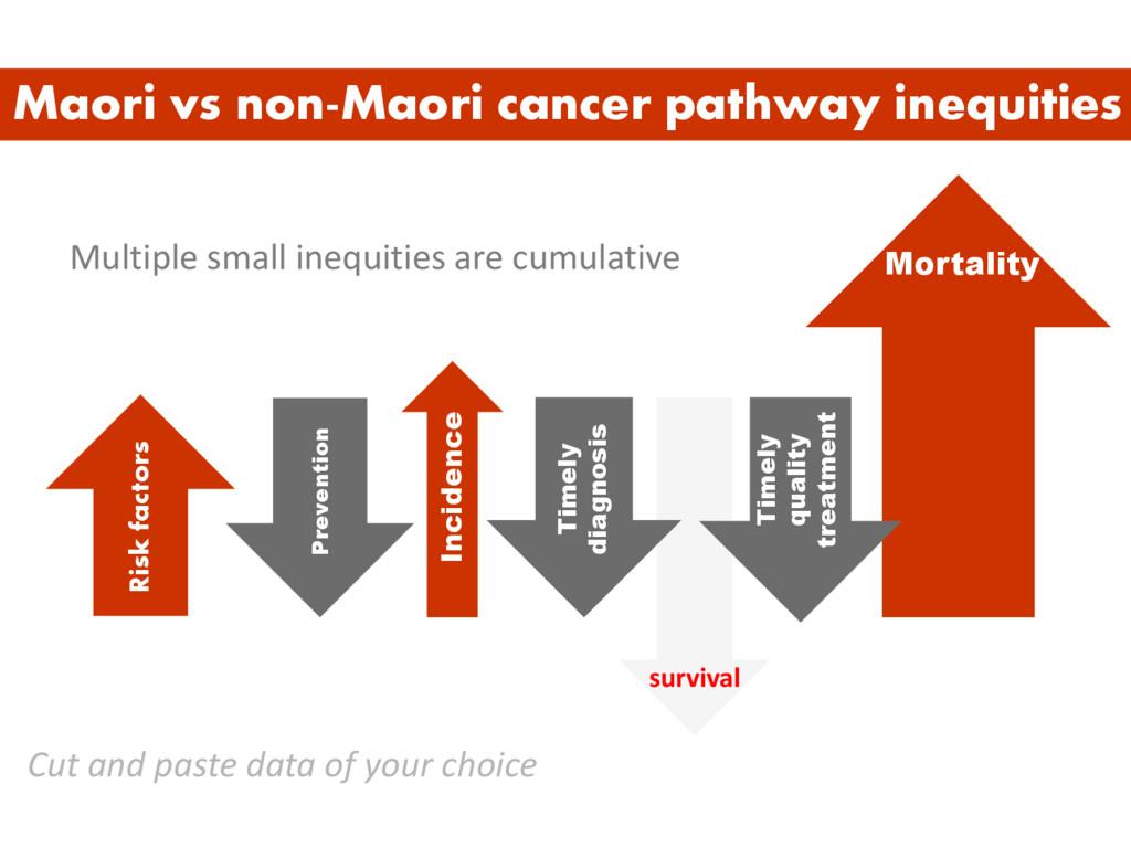 Multiple small inequities are cumulative Maori ...