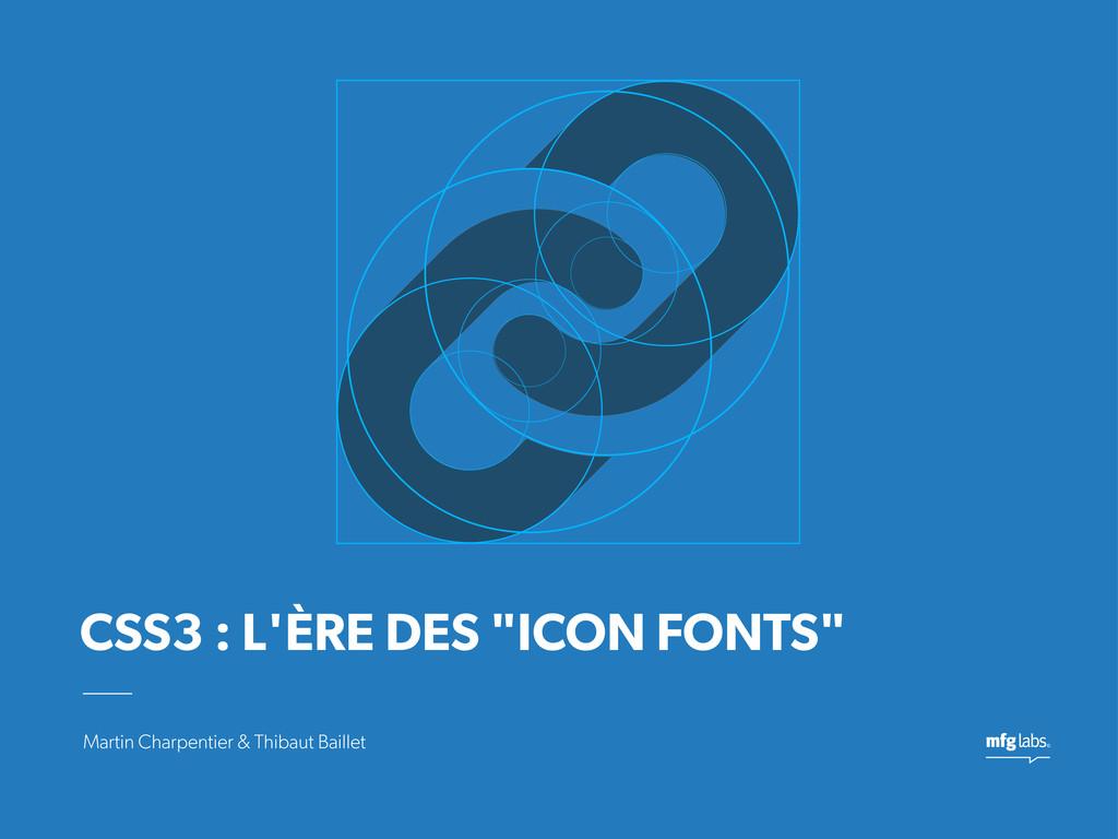 Martin Charpentier & Thibaut Baillet CSS3 : L'È...