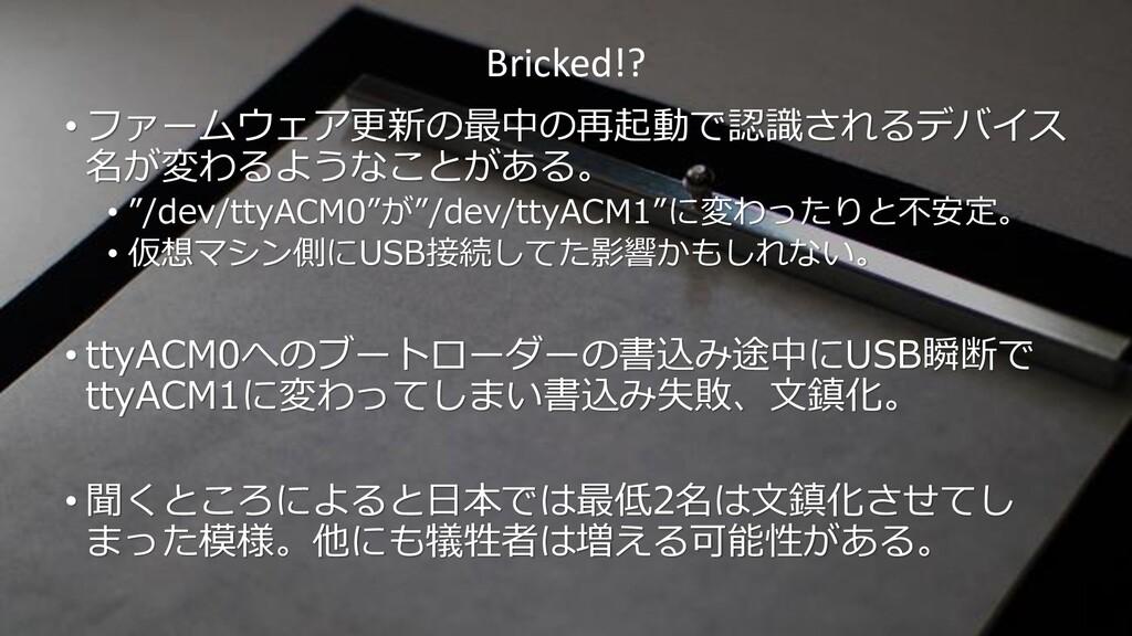 Bricked!? • ファームウェア更新の最中の再起動で認識されるデバイス 名が変わるような...