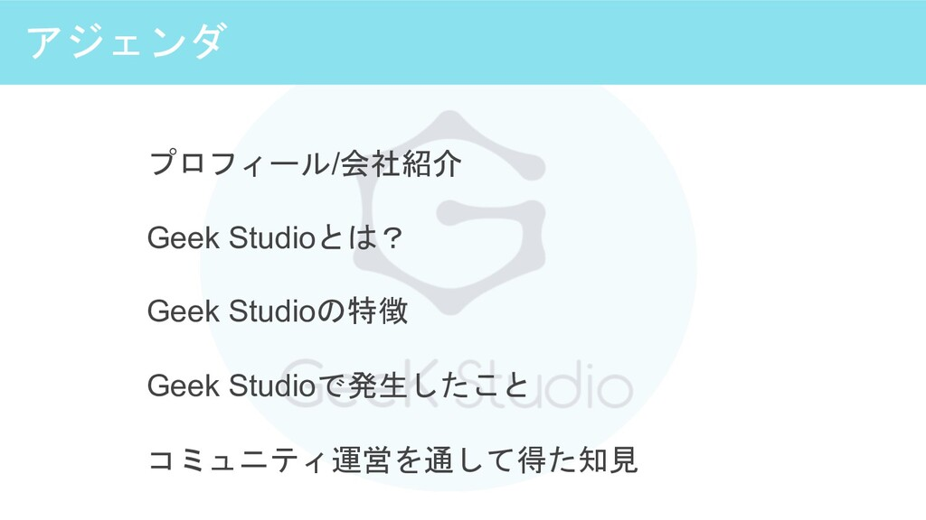 アジェンダ プロフィール/会社紹介 Geek Studioとは? Geek Studioの特徴...