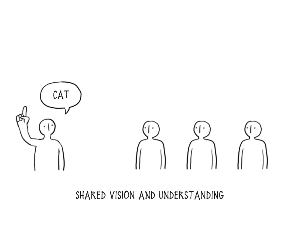 Shared vision and Understanding Cat
