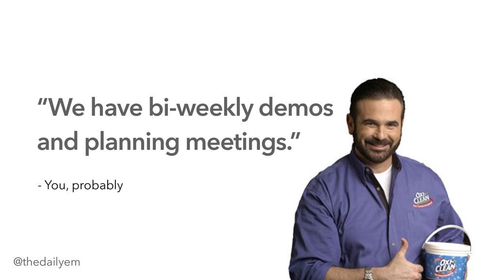 """""""We have bi-weekly demos and planning meetings...."""