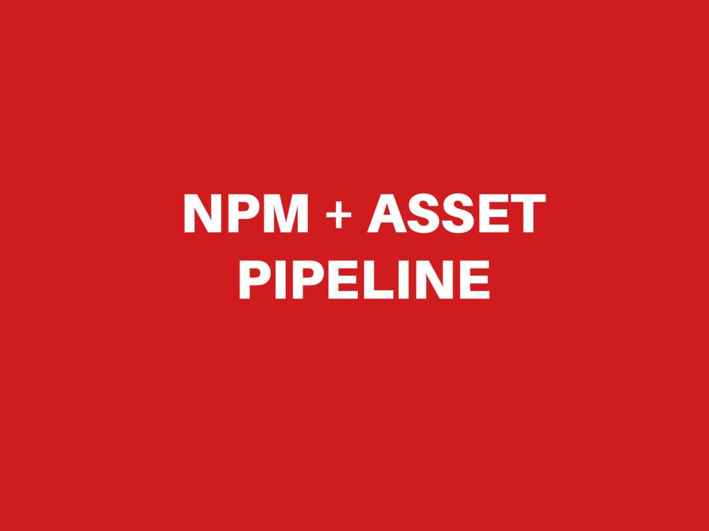 NPM + ASSET PIPELINE