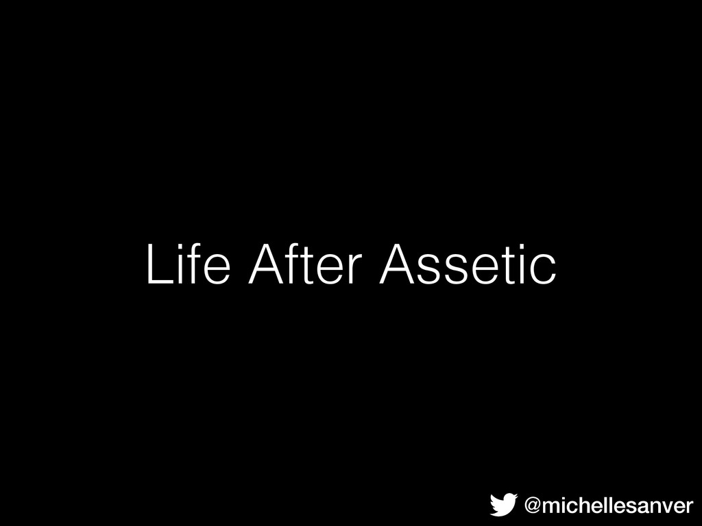 Life After Assetic @michellesanver
