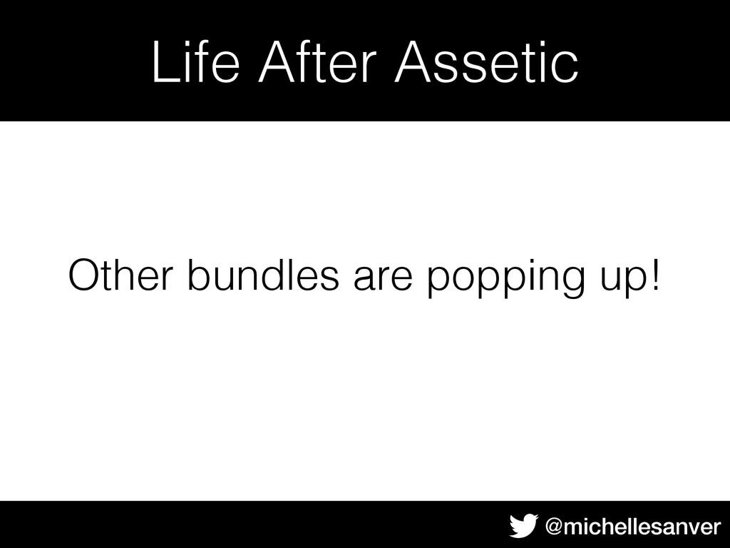 @michellesanver Life After Assetic Other bundle...